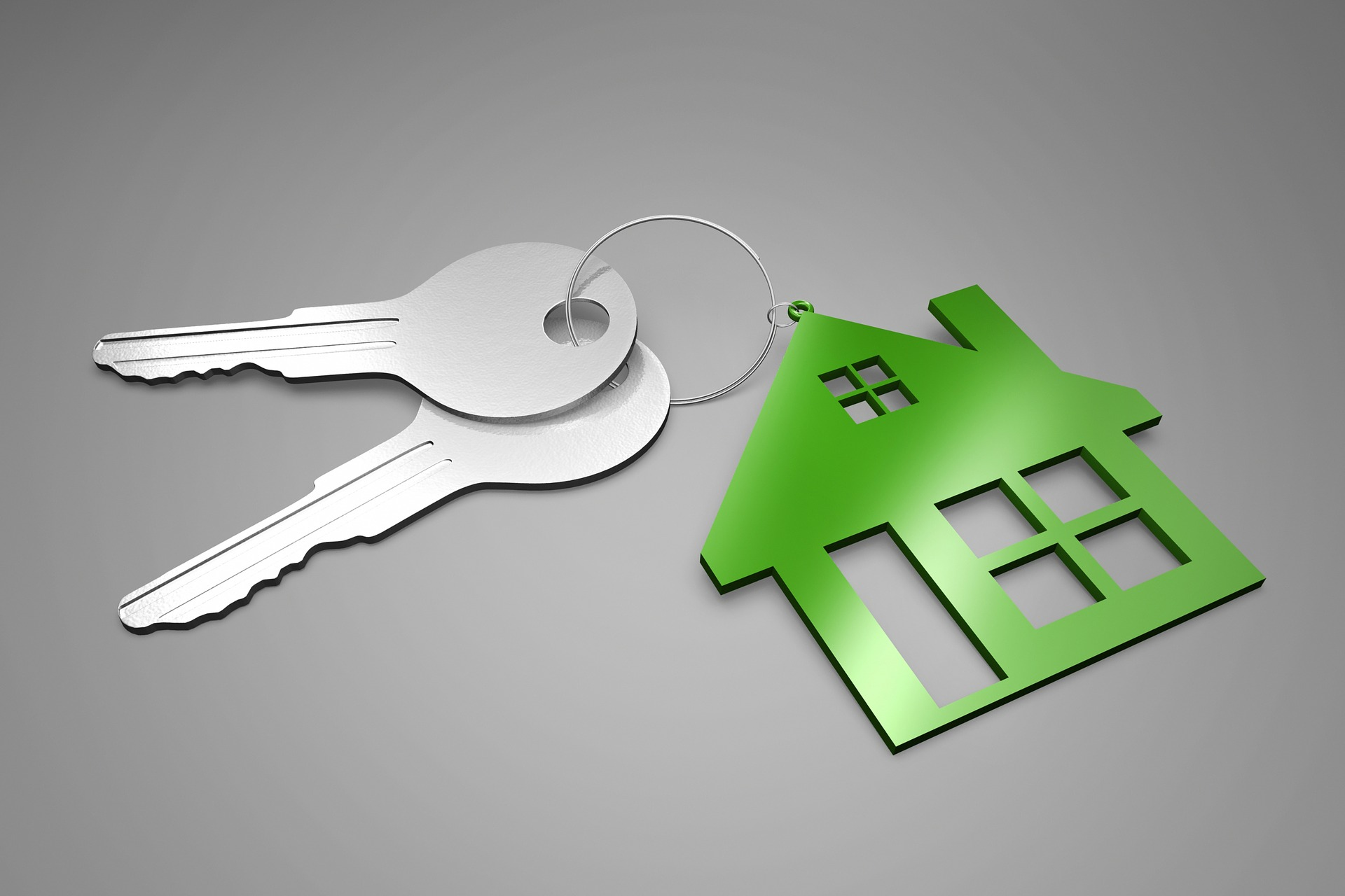 Image render of a keychain with silver keys and green house