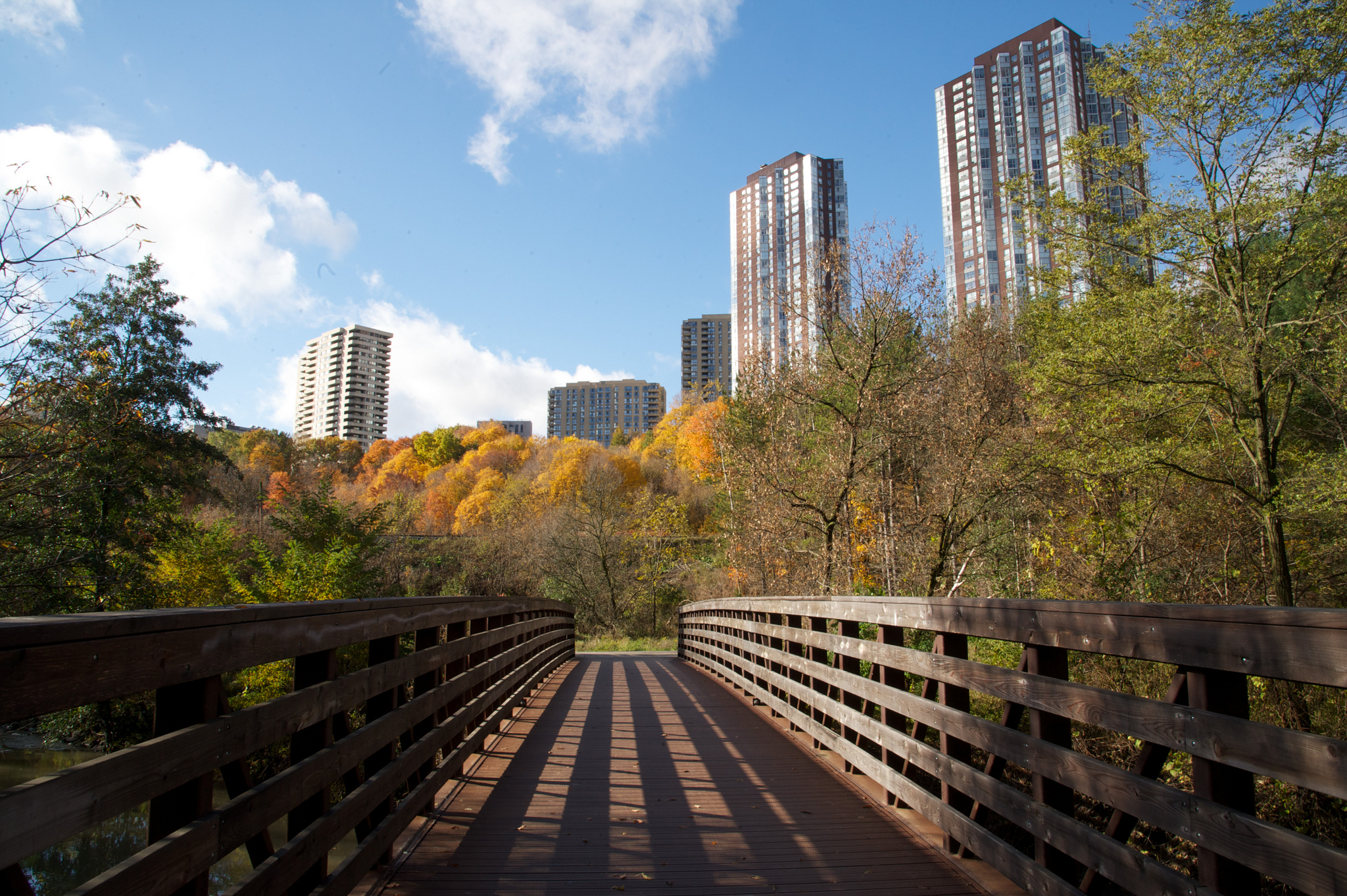 This photo shows the Don River bridge and park. It's almost evening time and maybe spring season due to the trees changing colour.