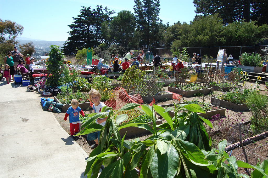 Community garden with kids and adults. The day is bright and also warm.