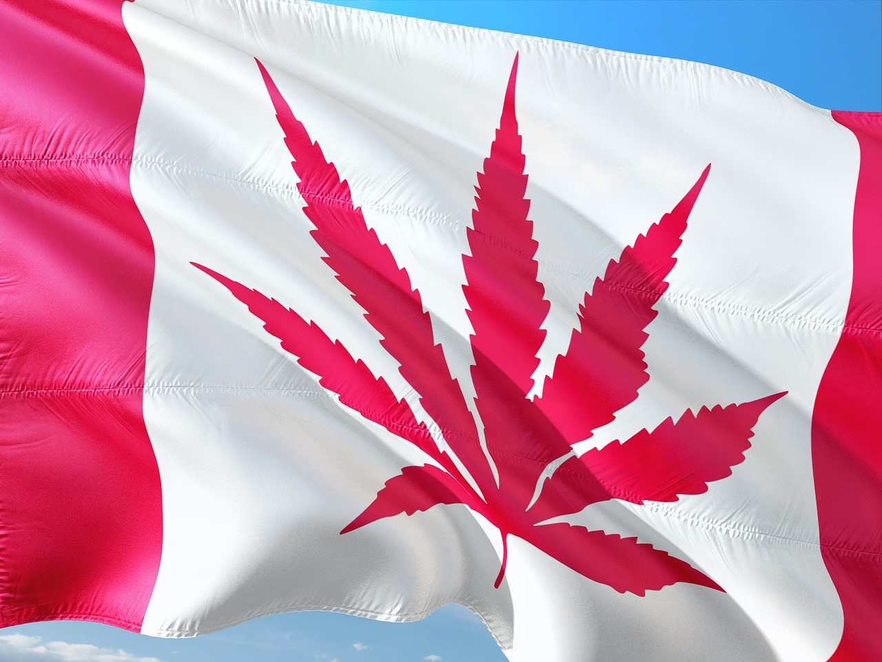 Flag of Canada with cannabis leaf replacing maple leaf, showing legalization of marijuana.