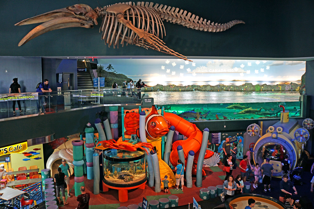 Ripley's Aquarium kid's play area with games and large skeleton.