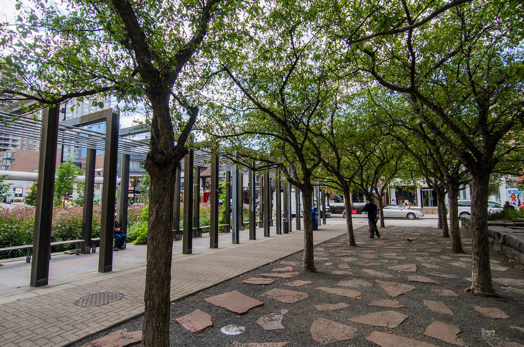 Trees and benches at Village of Yorkville Park.