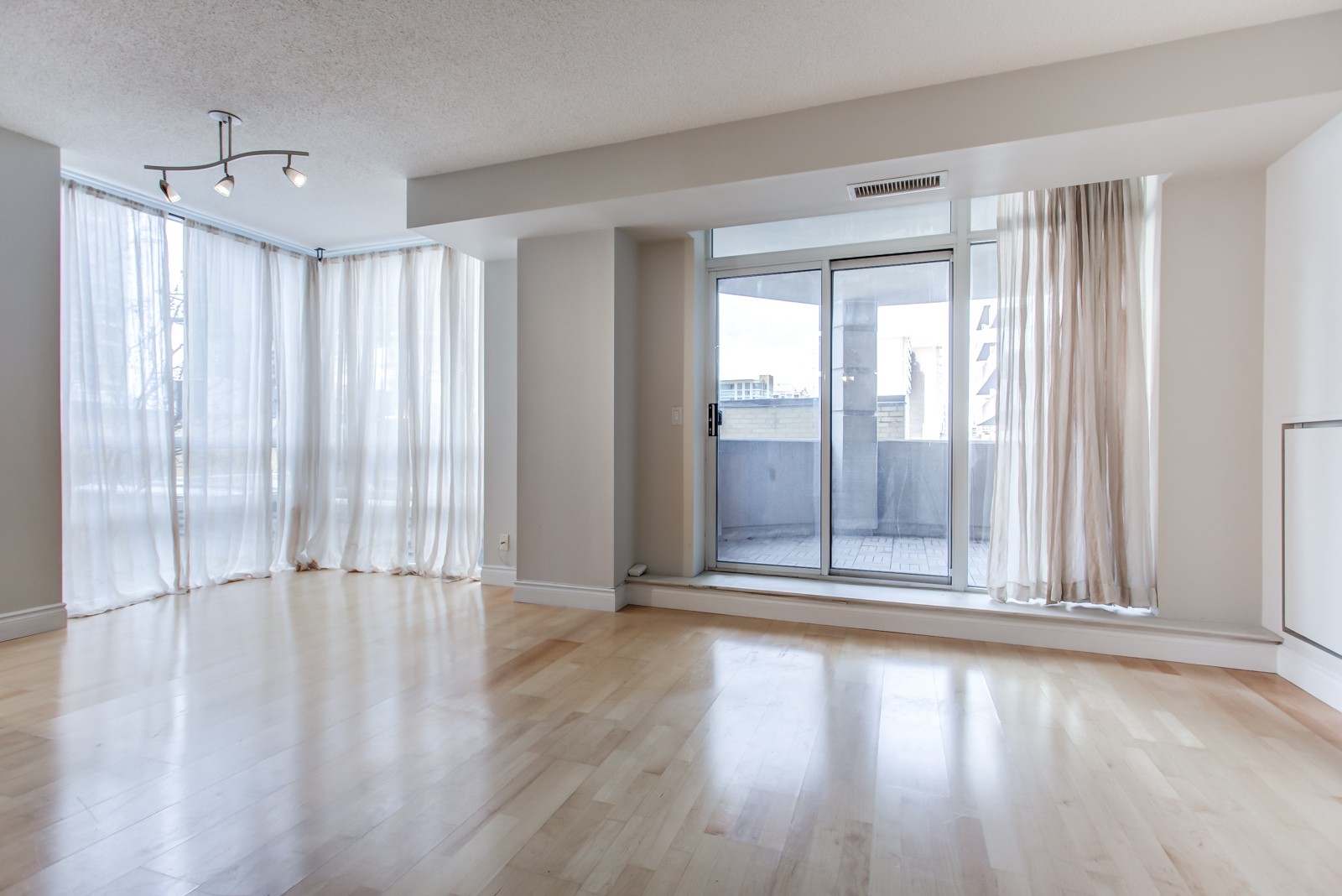 Brightly lit empty living room with gray walls and hardwood floors of 20 Collier St Unit 408.