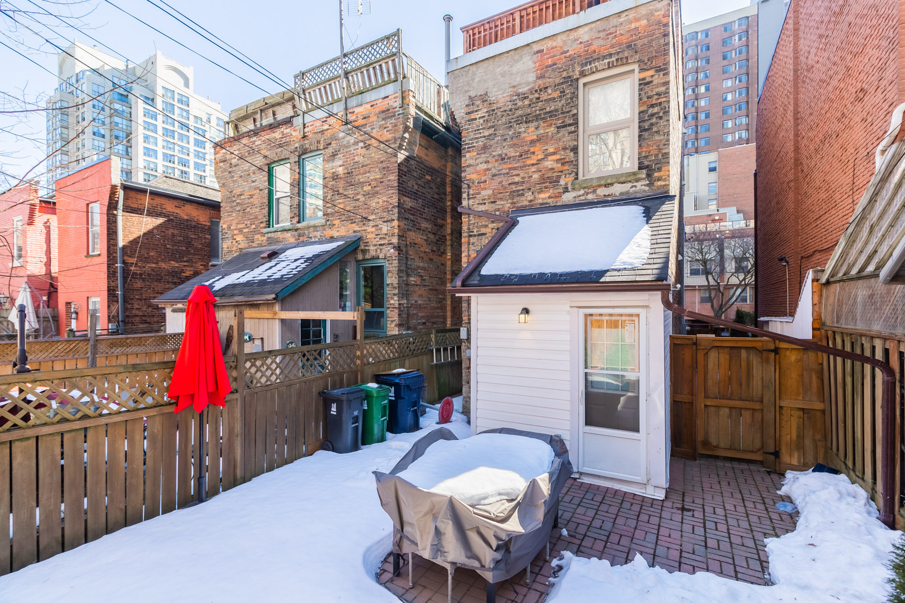 120 McGill St spacious backyard.