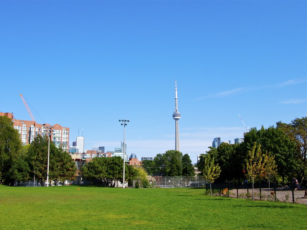 View of CN Tower from park.