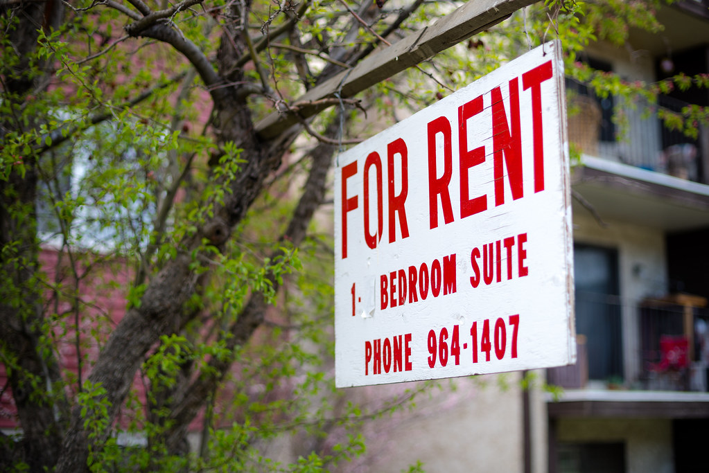 For Rent sign with red lettering hanging on tree.