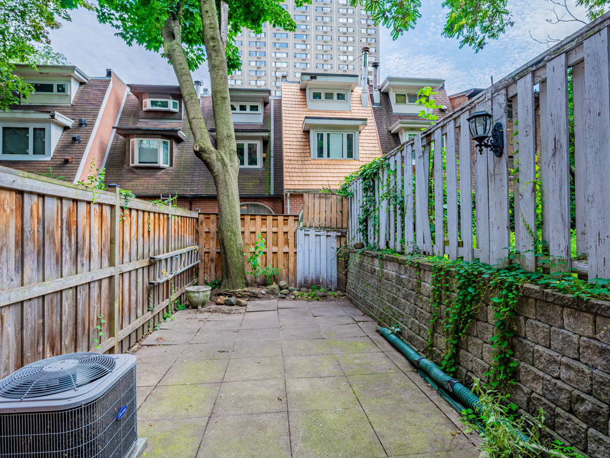 49 Granby St – huge backyard with tall tree and high fencing.