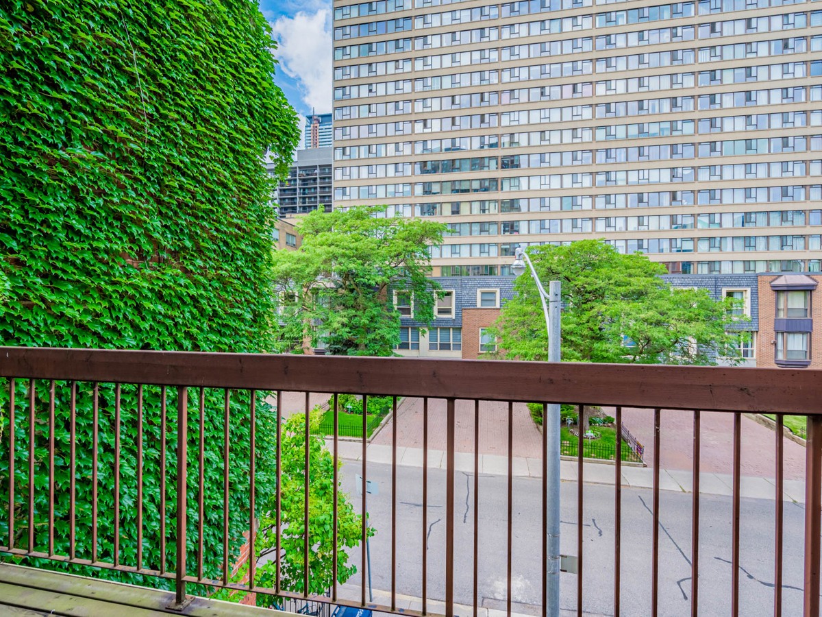 49 Granby St terrace with ivy-covered wall.