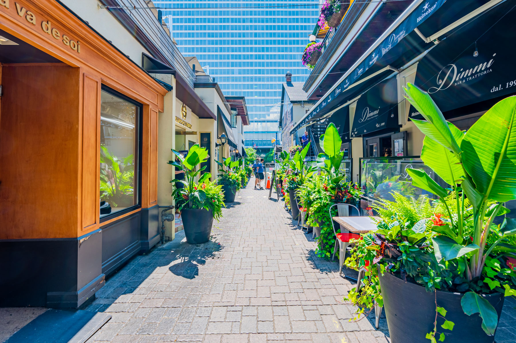 Narrow lane with potted plants and Dimmi Bar & Trattoria restaurant, Yorkville Toronto.